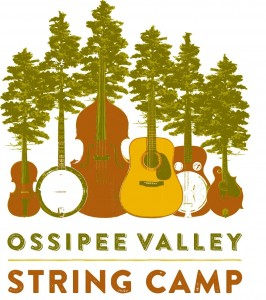 String Camp logo